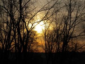 Winter Sunshine from atop Joseph's Lane