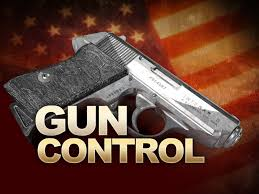 Balance Safety With Freedom – Guest Editorial From Noah Lantzy about Gun Control