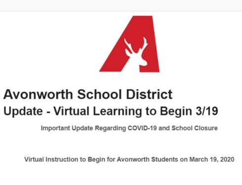 Virtual Learning to Begin 3/19